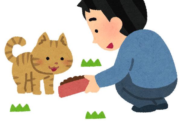 野良猫 CAT いらすとや
