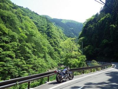 県道53号線(川沿い)