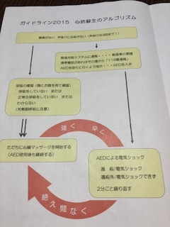 IMG_0009 (2)