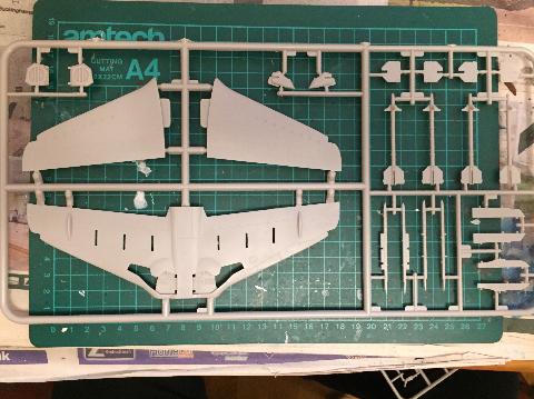 Hawk-liner2