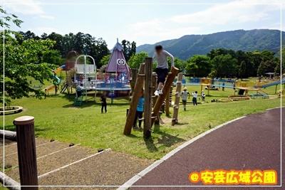 DSC07802.jpg