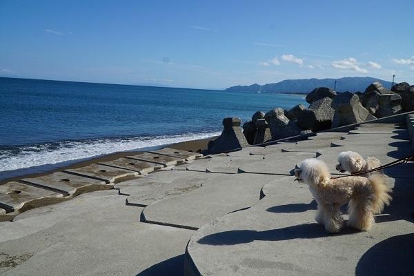 キレイな海を求めて~木古内~2