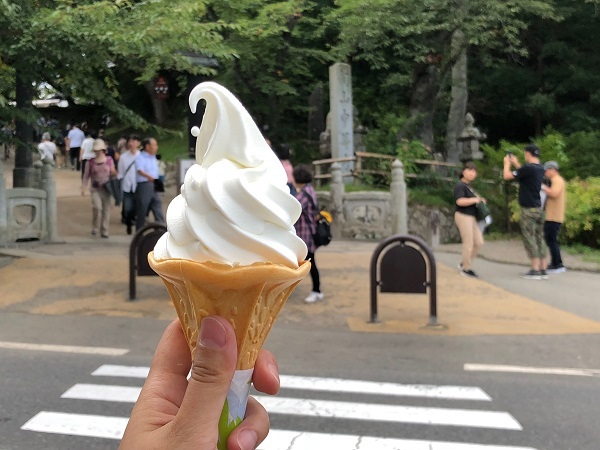 盛岡旅行 別名「ソフトクリーム食べ歩き紀行」3