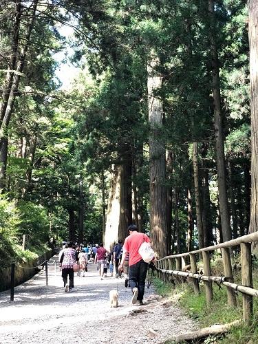 岩手・盛岡旅行 世界遺産 「 中尊寺 」8