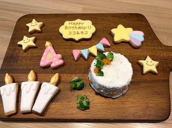 ココ モコ 4歳のお誕生日は初めての手作りケーキ(備忘録)5