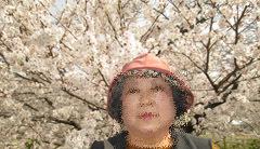 0329 春の吉香公園9