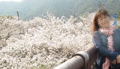 0329 春の吉香公園10