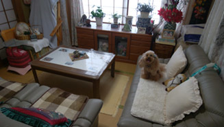 0611 和室A掃除中1