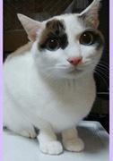 Mina 2歳