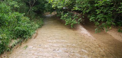 0711 豪雨災害後妹背川