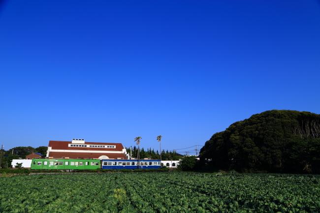 鉄道写真2495