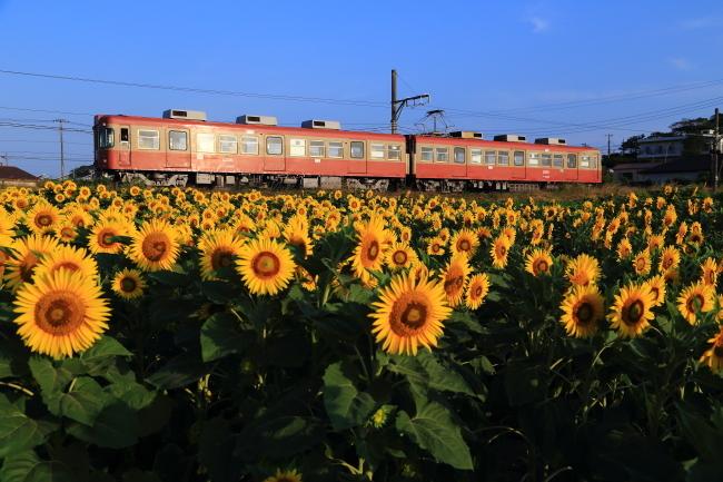 鉄道写真2845