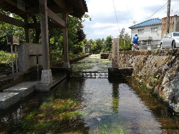baikasou-takefu-004.jpg
