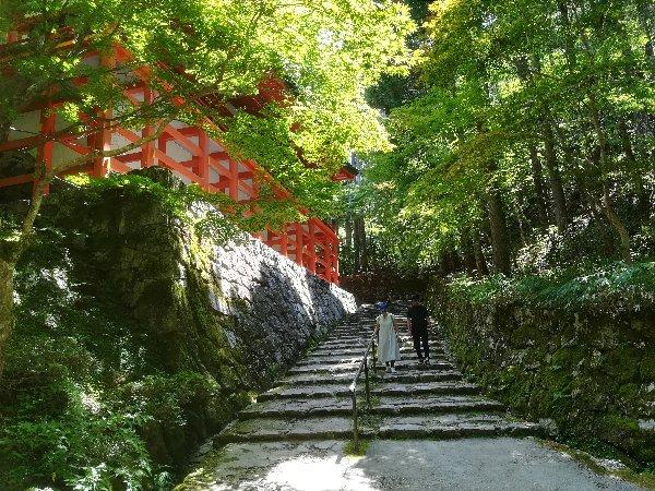 enryakugi-hieizan-002.jpg