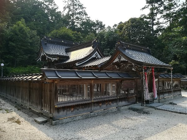 hiyoshijinja-katsuno-035.jpg