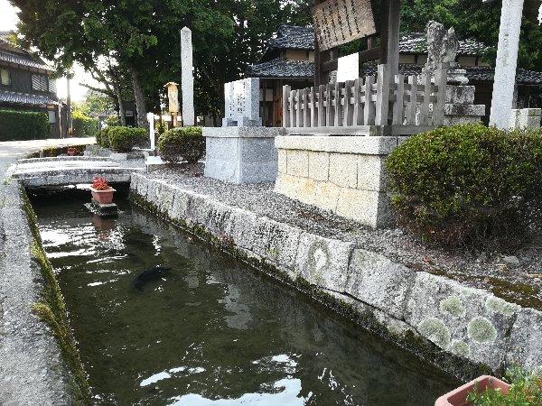 kabata-takashima-015.jpg