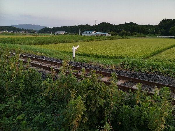 unazuki-kouga-016.jpg