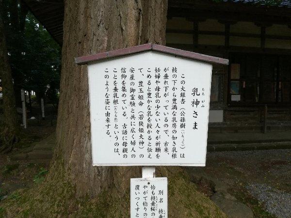 wakasahime-obama-070.jpg
