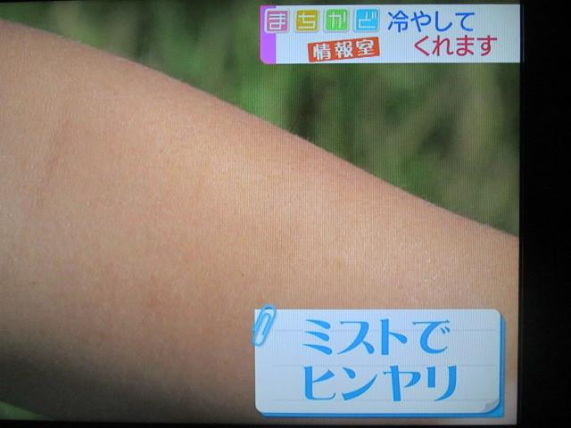 IMG_5925.jpg