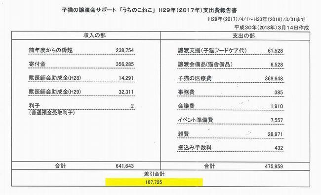 H29年収支報告書1