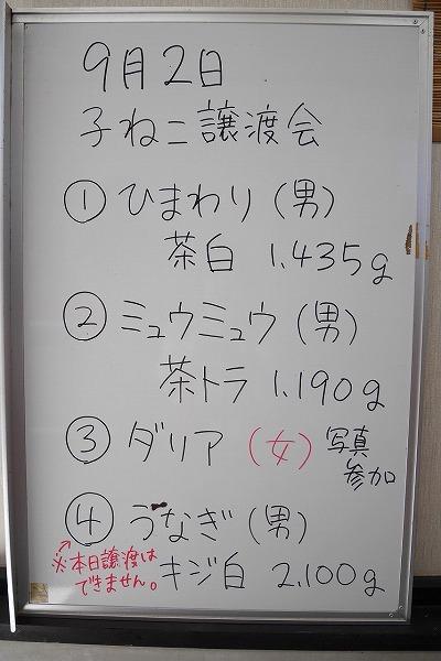 譲渡会_180903_0010