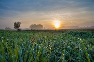 sunrise-3051938_1280.jpg