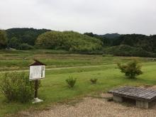 20180526山田寺2