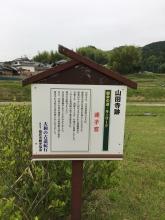 20180526山田寺4