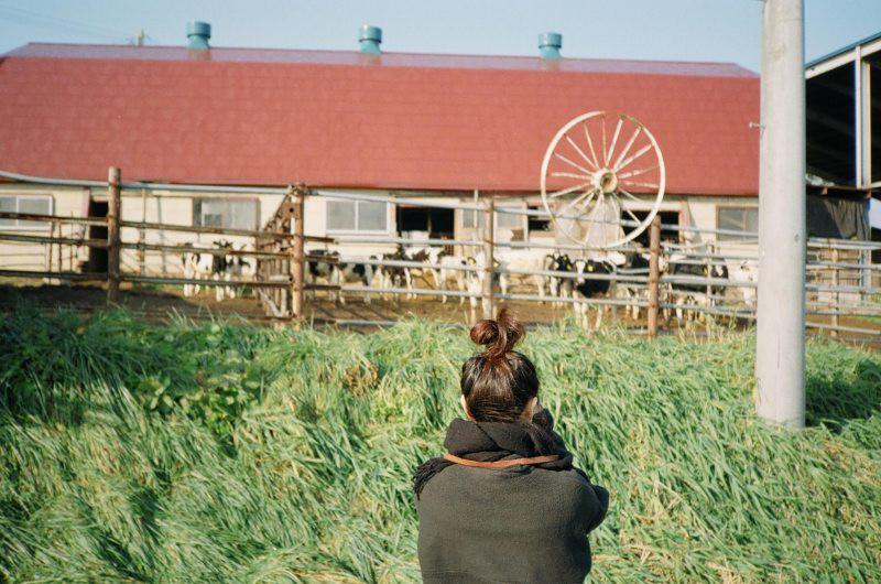 $フィルムカメラで嫁を撮る-牛と嫁