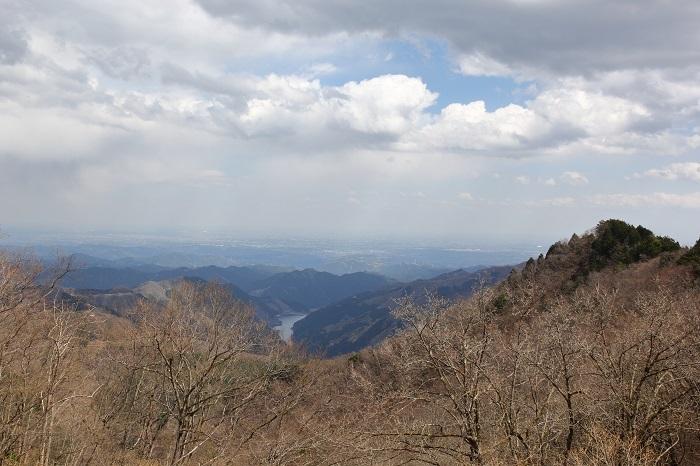 蕨山有間山2018 (21)
