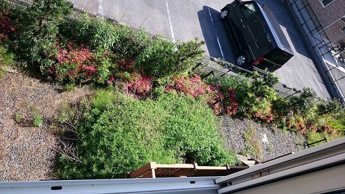 1階はお庭付き
