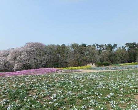 30_04_03 群馬県トレジャーガーデン 6