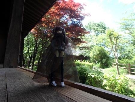 30_5_20 日光杉並木公園 3