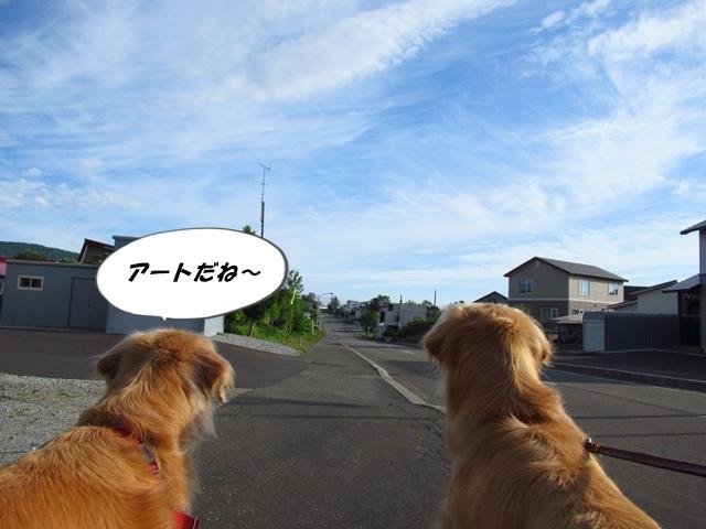IMG_4722.jpg