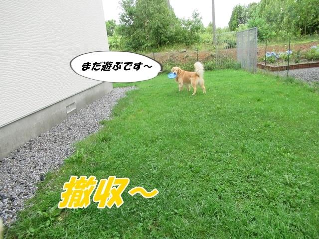 IMG_8392.jpg