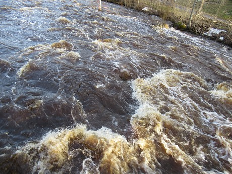 増量中の川