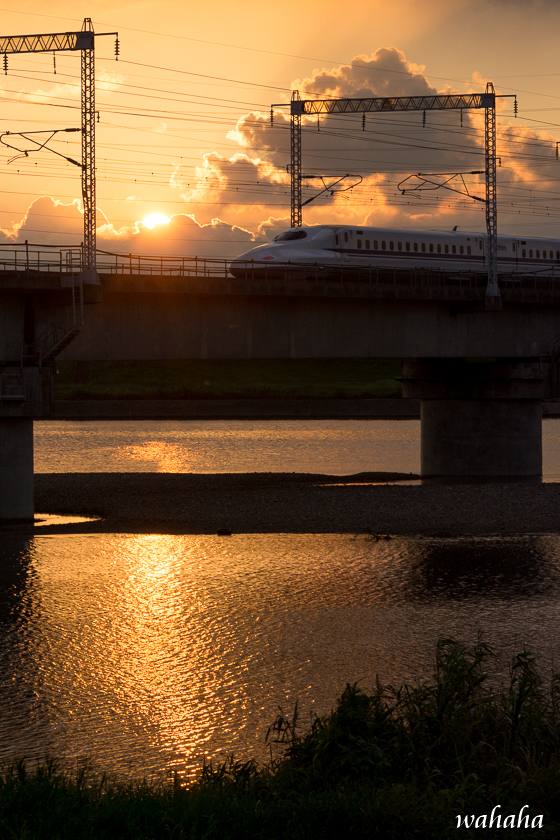 300902kakogawa_dy-4b.jpg