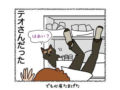 01082018_cat4.jpg