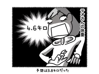 03082018_cat2.jpg