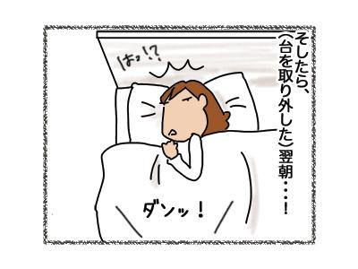 03092018_cat3.jpg