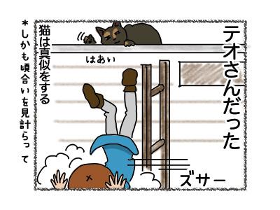 03092018_cat5.jpg