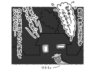 05092018_cat5.jpg