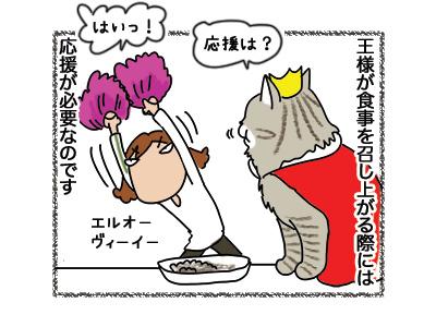 06082018_cat1.jpg