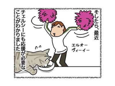06082018_cat2.jpg