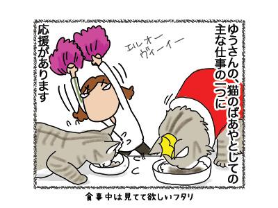 10092018_cat1.jpg