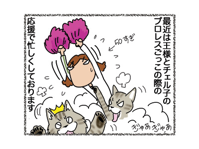 10092018_cat2.jpg
