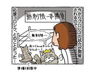 10092018_cat4.jpg