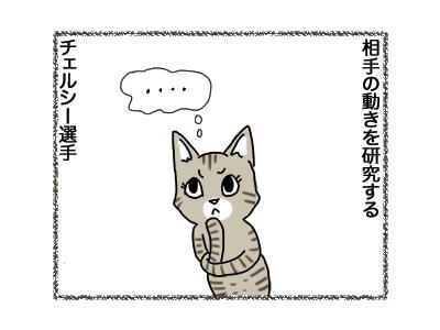 11092018_cat1.jpg