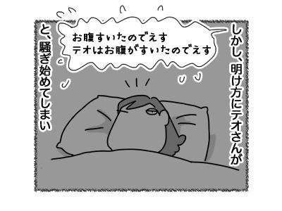 12072018_cat3.jpg