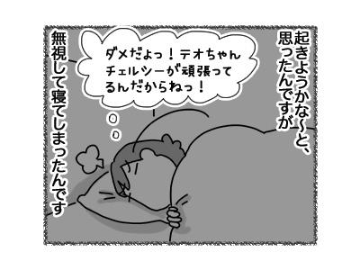 12072018_cat4.jpg